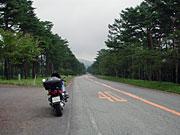 県道150