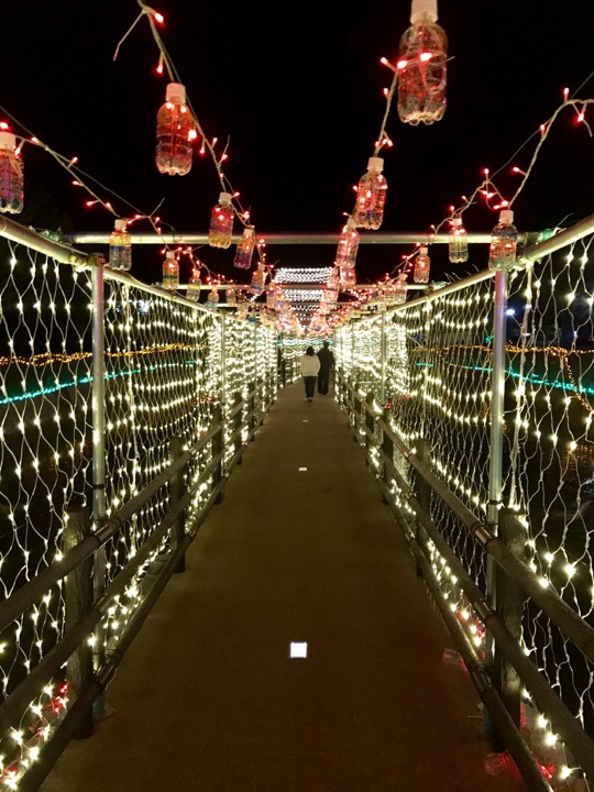WINTER ILLUMINATION in ならは