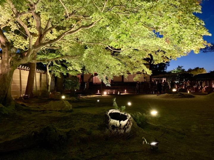 高台寺 庭園